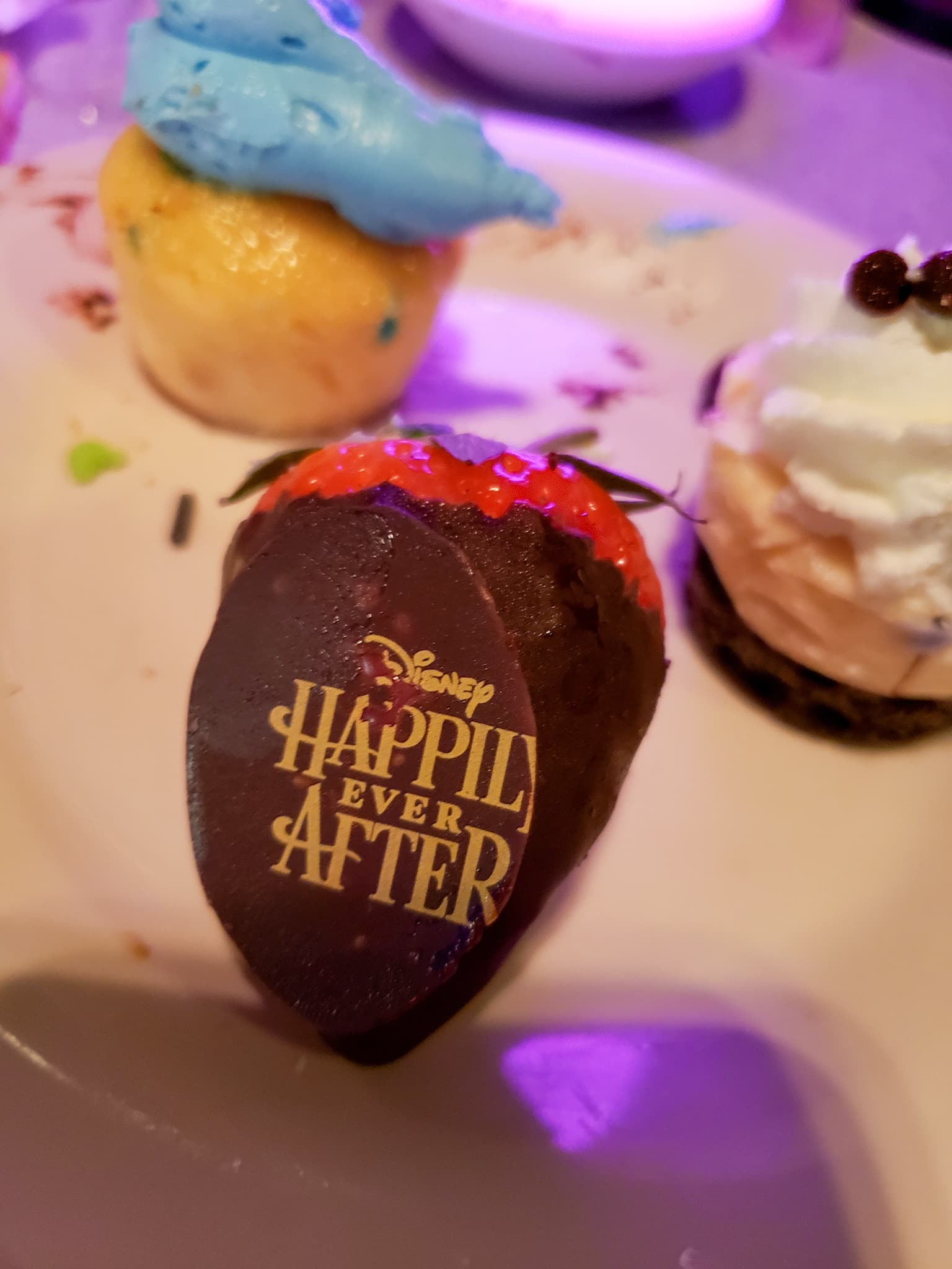 Magic Kingdom's Happily Ever After Dessert Party