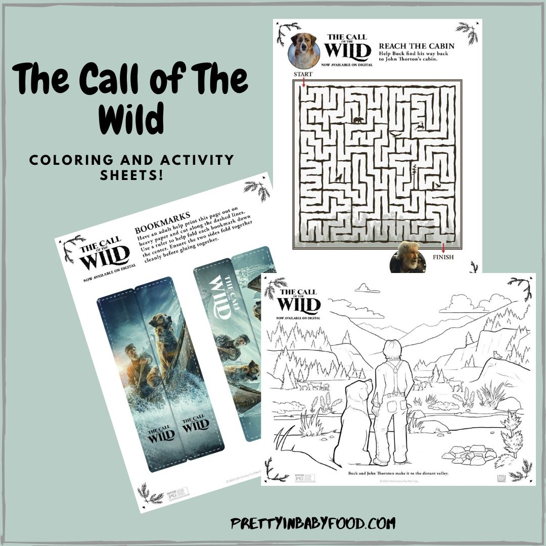 The Call of The Wild Coloring and Activity Sheets